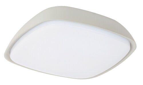 Plafoniera exterior Austin Rabalux, 8796, gri, LED 20W, Lumina Neutra, 2000lm